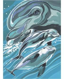Delphin Portrait - Bild vergrößern