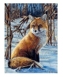 Der Fuchs, 22 x 30 cm